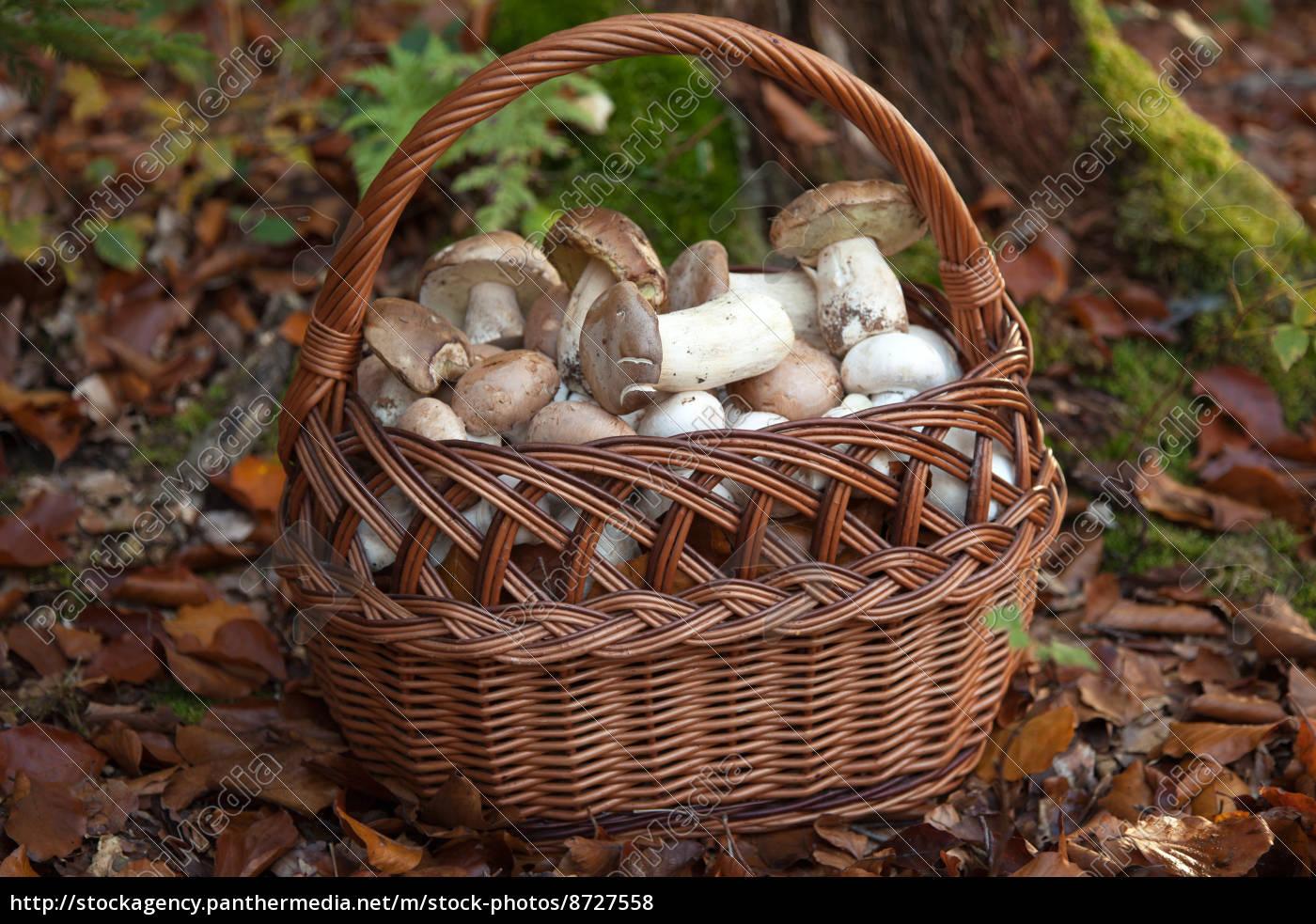 Корзинка с грибами своими руками