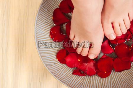 foot, spa - 4070991