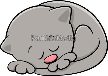 sleeping kitten cartoon illustration