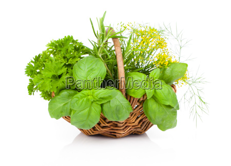basilparsley and dill in basket