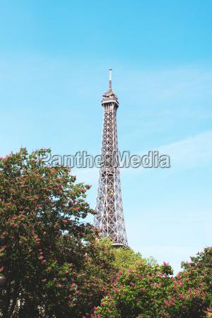 france paris eiffel tower among the