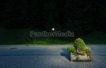 box of flowers by roadside salzburg
