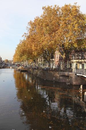 arquitetonicamente cor folhas nuvem reflexao europa