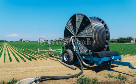 hoses to water crops in emilia