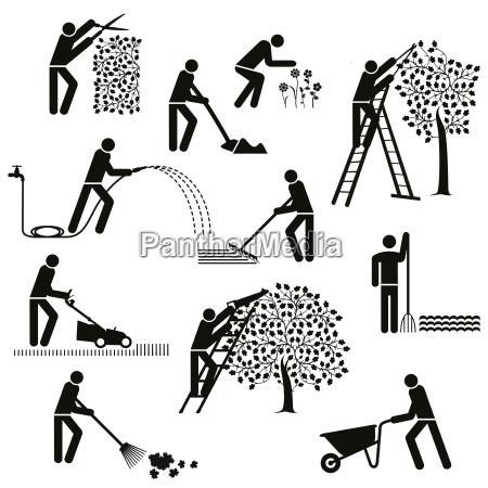 gardening planting gardening