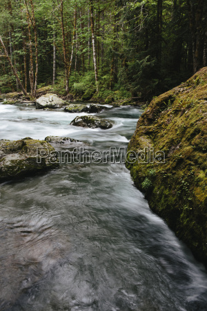 scenic view of sol duc river