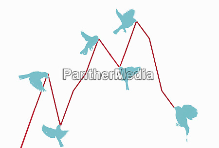 birds pulling in line graph up