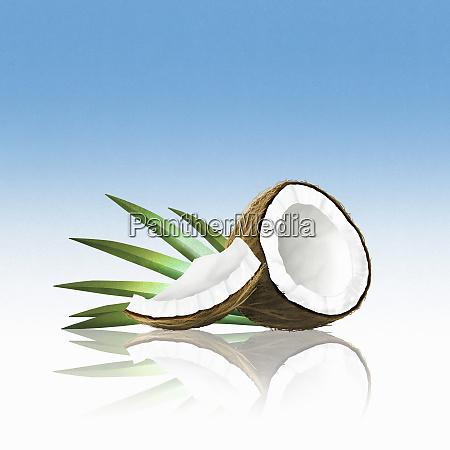 pieces, of, coconut - 26003090