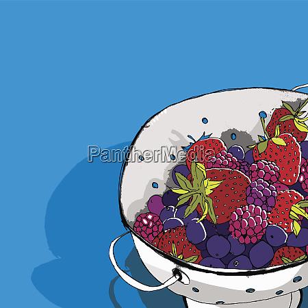 berries in colander