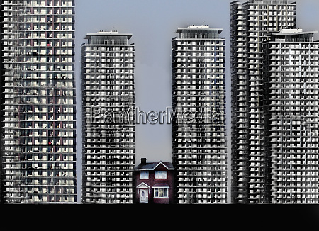 small, detached, house, surrounded, by, tall - 26008856