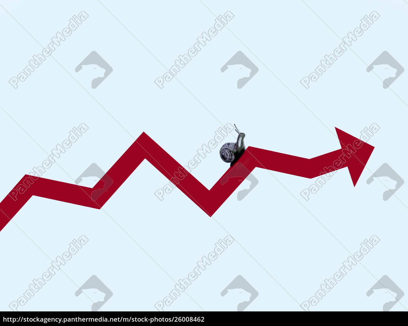 snail, crawling, along, line, graph, arrow - 26008462
