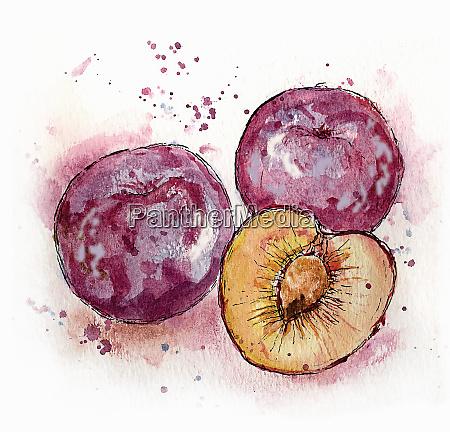 close up of three plums