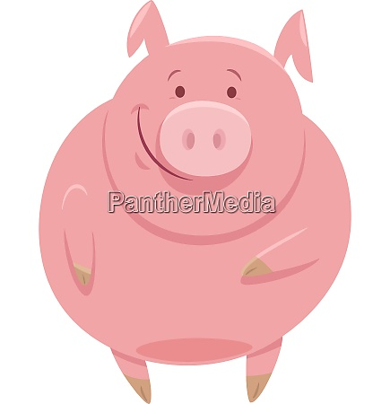cute pig animal character cartoon illustration