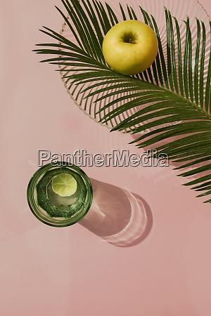 studio shot of palm leaves glass